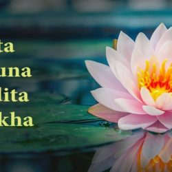 Па Аук Саядо — Практика развития доброты (метта-бхавана)