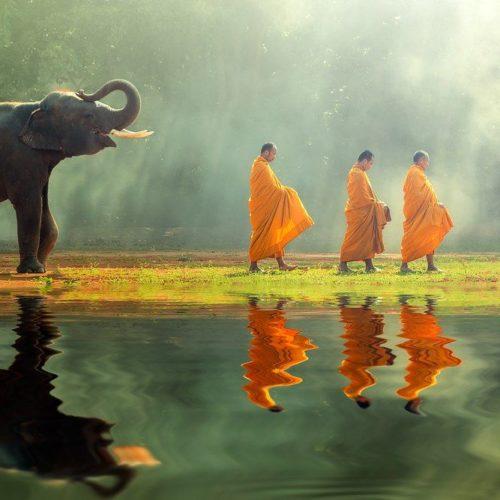 Семеричная польза от медитации осознанности — Саядо У Джанакабхивамса