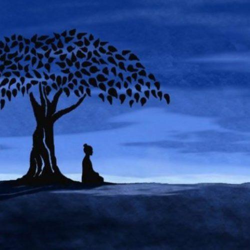 Постоянство — Шравасти Дхаммика