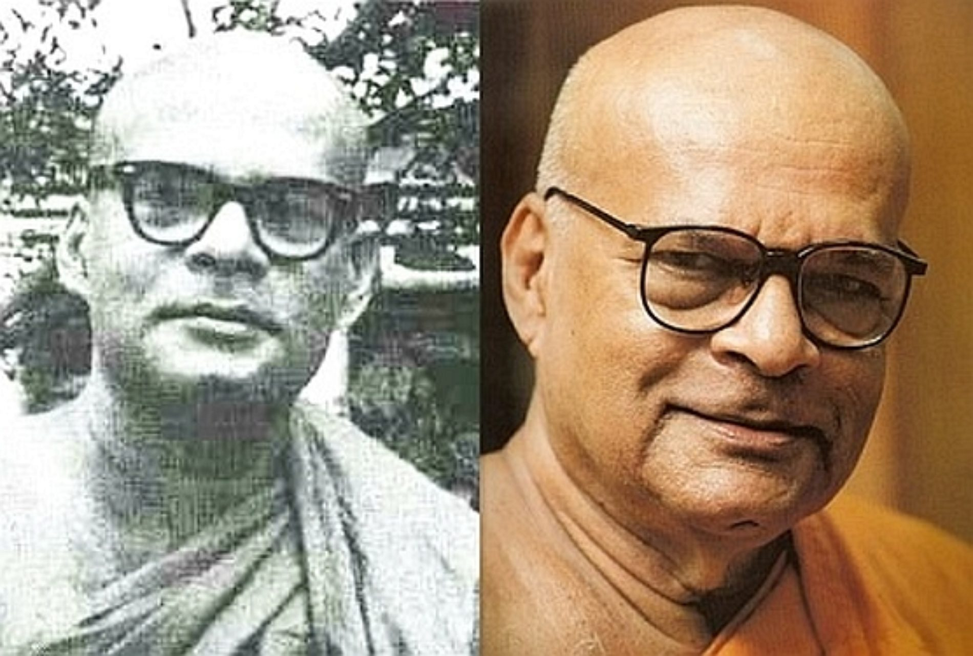 Жажда существования посредством перерождения — Шри Дхаммананда