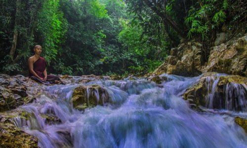 Созерцание чувств — Ньянапоника Махатхера