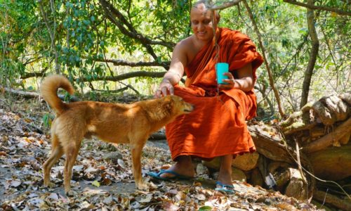 Лекция по Абхидхамме  —  Бхиккху Ньянасиха  (аудио-лекция)