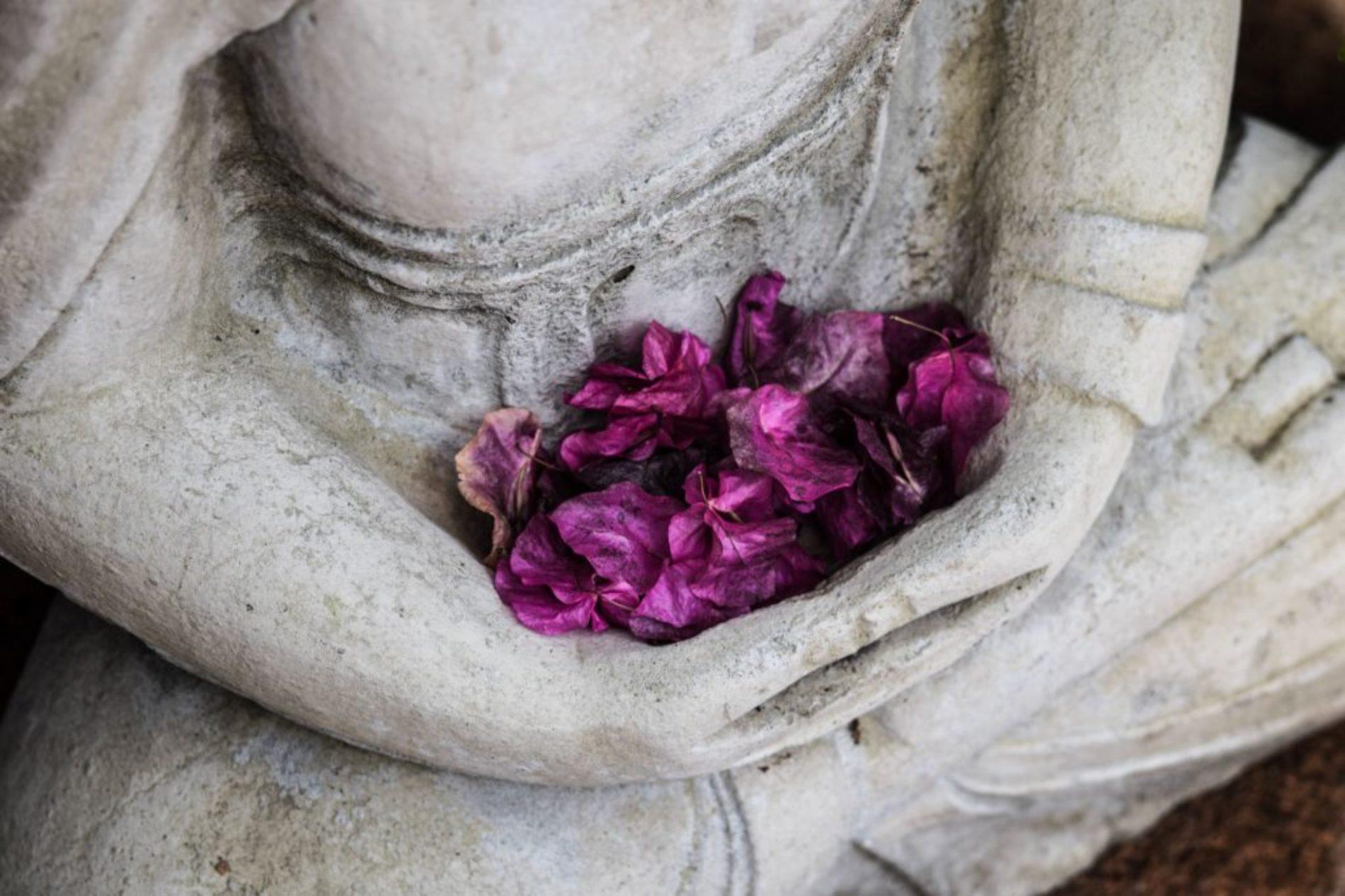 История  западного буддийского монаха — Бхиккху Чинтита