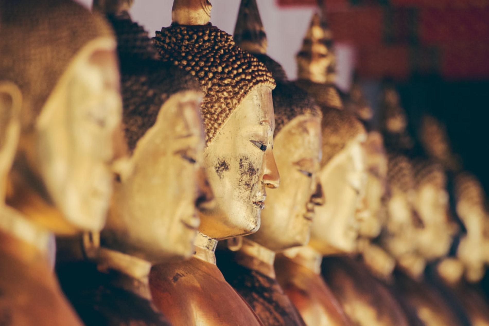 Продать конфеты за золото — Тханиссаро Бхиккху