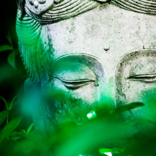 Что такое осознанность? — Тханиссаро Бхиккху