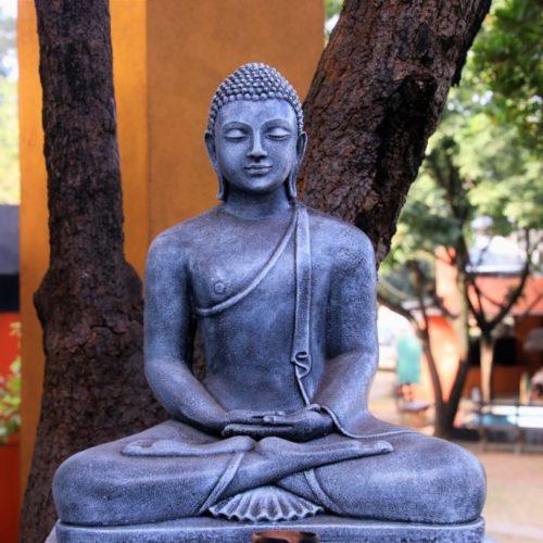 Вовлечённый буддизм:  взгляд на ранний буддизм  —  проф.  Бхиккху Сатьяпала